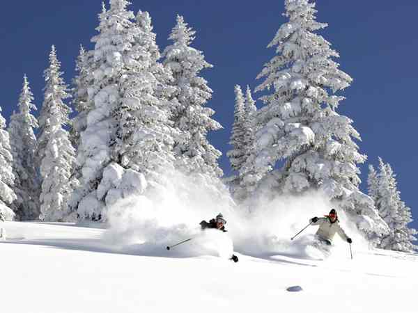 Flights to Chambery, Skiers